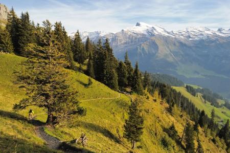 Mountain Biking Photographed with tilt-shift lens
