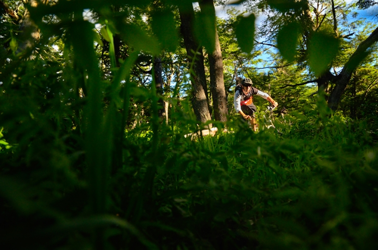 Photo of mountain biker riding in the woods in Bariloche