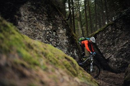 Mountain Biking photo of some biking in the dark mossy swiss forest