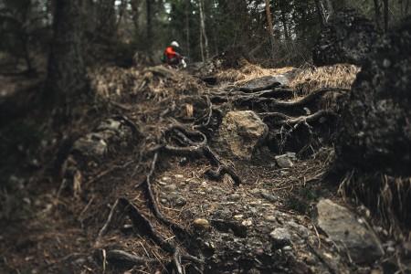Dark dank gnarly trail