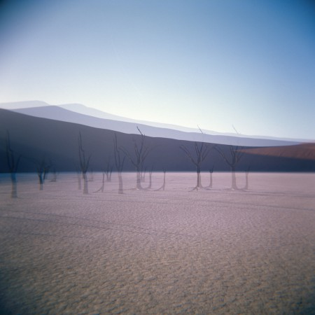 Triple exposure made with the Holga camera showing a row of trees in Namibia.