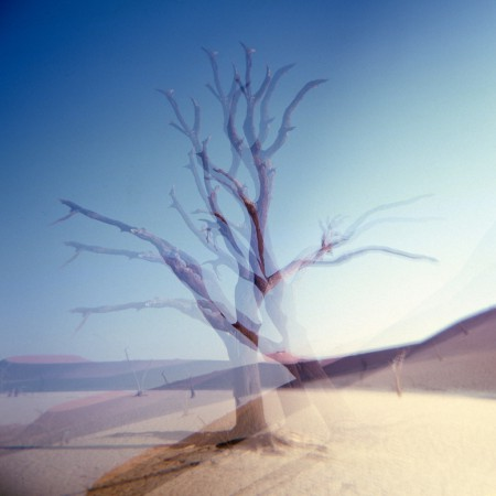 Triple exposure shot of a tree in Deadvlei, Nambiba.
